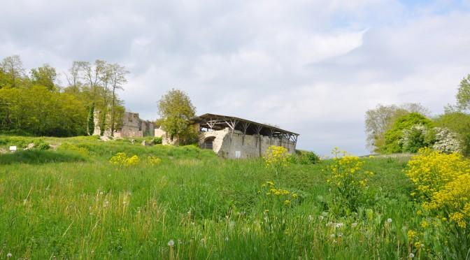 Abbaye Saint-Vivant de Vergy